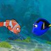 рыбки - Рыбки играют в догонялки