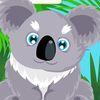 ухаживать - Твоя домашняя коала