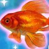 рыбки - Уход за аквариумом