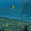 сокровища - Клад под водой