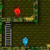 огонь и вода - Приключения в новом лесном храме
