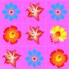 цветы - Цветочная загадка