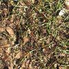 поиск - Иголка в стоге сена