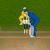 спортивные - Увлекательный крикет